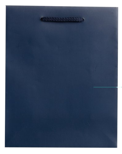 Jillson Roberts Bulk Medium Gift Bags Available in 19 Colors, Navy Matte, 120-Count (BMT926) by Jillson Roberts