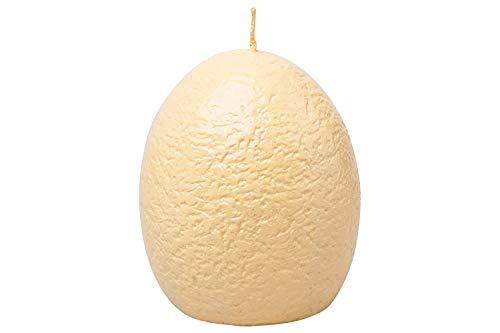- YAZAN-MOLANDI T-Rex Dinosaur Hatching Egg Candle