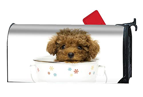MALBX Animal Cute Dog Puppy Poodle Tea Cup Magnetic Mailbox Cover