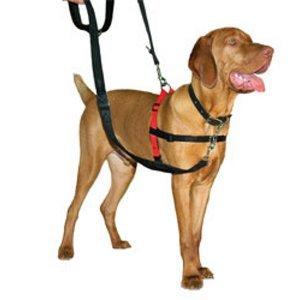 JORGENSEN Halti Dog Harness, Medium