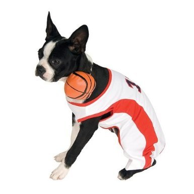 Rubie's Basketball Player Dog Costume, Large 18-20