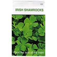 Set of 3 Lrg Shamrock Seed Packets