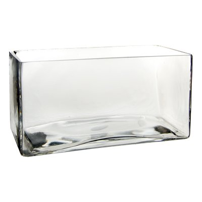(CYS EXCEL Glass Rectangle Vase. H-4