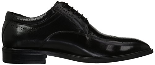 Black Oxford Zanzara Zanzara Men's Cesar Cesar Men's Oxford R0OwnqY