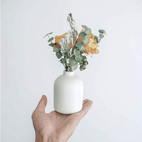 BOT Florero Jarrones Blanco de cerámica con Flores secas (Rose ...