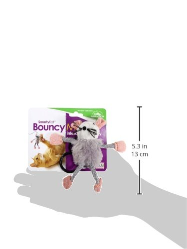 SmartyKat Interactive and Wand Cat Toys 12