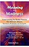 Meaning from Madness, Richard Skerritt, 1933369140