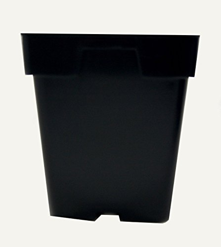 Greenhouse Pots Jumbo 5.5 Inch Deep Square Black Growing Flowers by growerssolution'