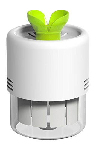 iVid Airpot Desktop Air Cleaner/Purifier Deodorizer, TiO2 Photocatalysis with LED Mood Light by iVid