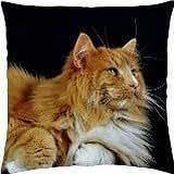 cat! - Throw Pillow Cover Case (18