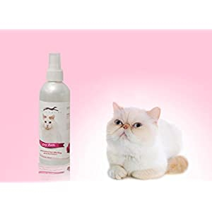 Pets Empire Waterless Cat Shampoo | All Natural Dry Shampoo for Cats No Rinse Required- 250 ml(Strawberry)