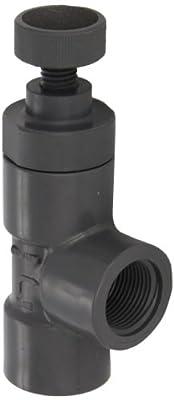 "Hayward PVC Globe Valve, FPM Seal, 1"" Threaded by Hayward"