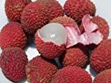 Tropical Importers Fresh Lychees (5lb)