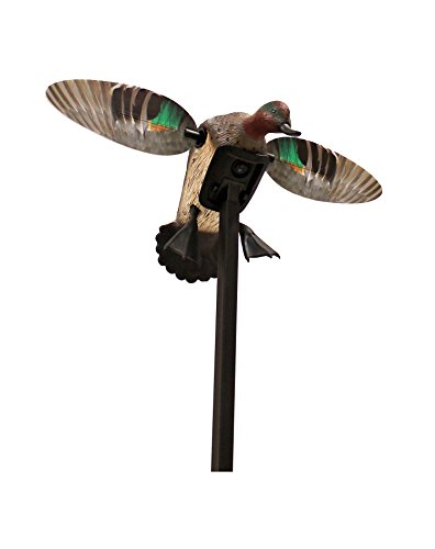MOJO Outdoors Elite Series Duck Hunting Motion Decoy, Green Wing Teal - Drake Motorized Decoy Duck
