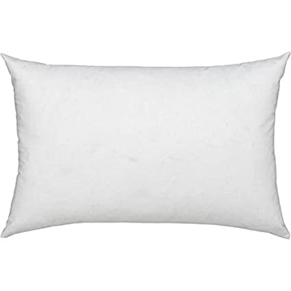 Amazon ComfyDown 40% Feather 40% Down 40 X 40 Rectangle Best Rectangular Decorative Pillows For Couch