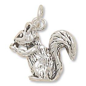Silver charms amazon