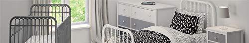 31ppprw8UwL - Little Seeds Monarch Hill Ivy Metal Crib, Gray