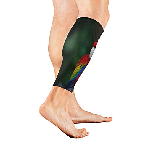 (Stretch Sport Calf Sleeve Scarlet Macaw Beautiful Single Colors Protective Guard for Men Women - Best Footless Compression Socks for Shin Splints, Running,Basketball Football (1 Pair))