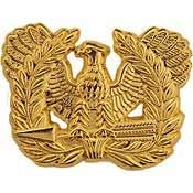 - US Army, Warrant Officer - Officially Licensed Original Artwork, Expertly Designed, PIN - 1