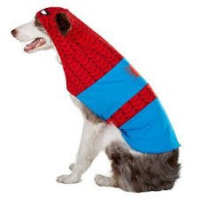 [Marvel Comics Spiderman Dog Costume XL] (Dog Superman Costume Xl)