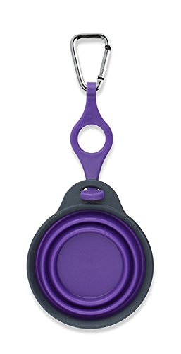 Dexas Popware for Pets Travel Pet Cup with Bottle Holder and Carabiner, Gray/Purple by Dexas