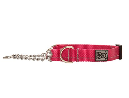 RC Pet Products 1 Inch Primary Collection Training Martingale Dog Collar, Large, Raspberry