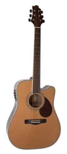 Greg Bennett Acoustic Guitars - 4