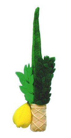 Plush Lulav & Esrog Set