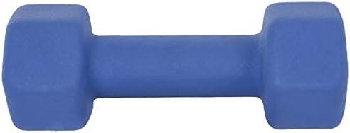 AOCEOSK Dumbbell Barbell Neoprene Coated, Weights 12 Pound, Single Dumbbell, Blue Neoprene Coated Exercise & Fitness Dumbbell for Home Gym