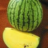 Watermelon Yellow Doll - Hybrid Great Garden Vegetable By Seed Kingdom BULK 100 Seeds