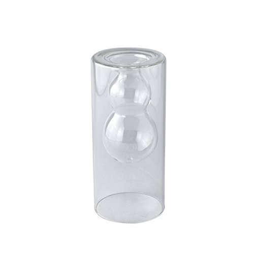 (Time Concept Laboratory Glass Double Wall Vase Gourd - Flower/Plant Storage, Home)