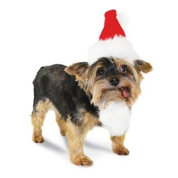 Dogo Santa Hat Large