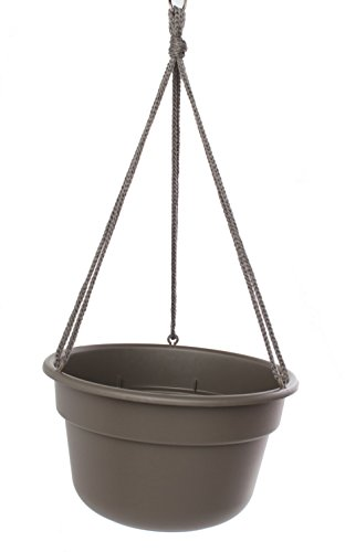 Bloem DCHB1260-12 12-Pack Dura Cotta Hanging Basket/Planter, 12-Inch, Peppercorn by Bloem
