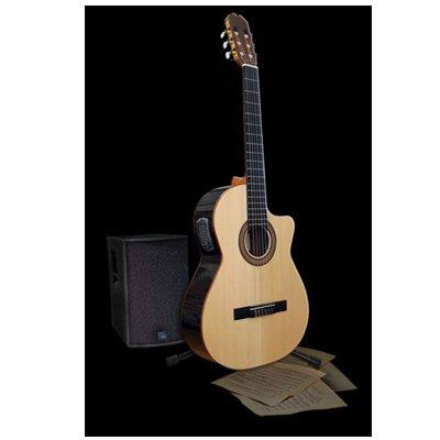 Admira Sombra - Guitarra electroac?stica (cutaway): Amazon.es ...