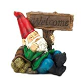 SKB Family Welcome Gnome Solar Statue Charming Lethargic Tortoise Lights Polyresin