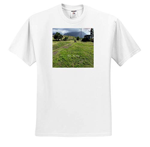 - Lens Art by Florene - Cruise Ship Sites - Image of Horse On St Kitts Hill Top - T-Shirts - White Infant Lap-Shoulder Tee (12M) (ts_291440_67)