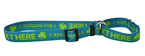 Custom Personalized Martingale Dog Collar, Teal, Medium by Hot Dog Collars