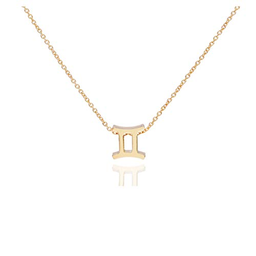 Snowpra 12 Constellation Pendant Necklace Astrology Gold Tone Chain with Message Card