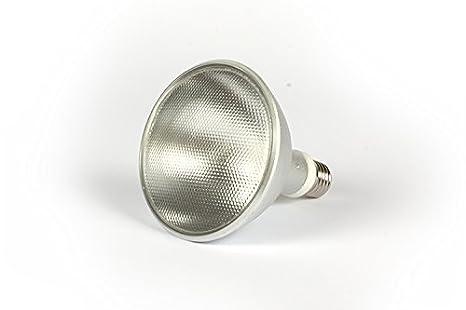 Reptech hid d uvb lampade ad alogenuri metallici ballast esterna