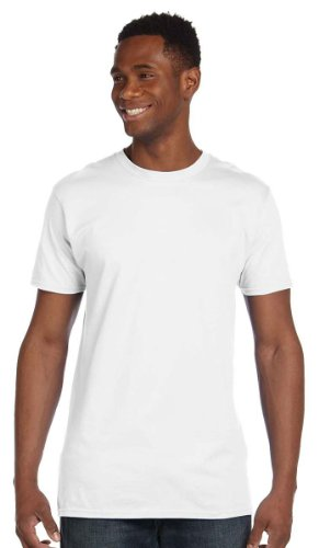 Hanes 4980 Mens Nano T-Shirt 1 Vintage Grey + 1 White