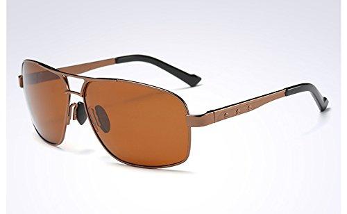 polarizadas Hombre de gafas sol sol de VERDE BROWN de Mens Sunglasses TL Gafas sol Gafas Moda GRIS Xq7YE