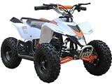 Big Toys USA MotoTec 24v Mini Quad v3 White