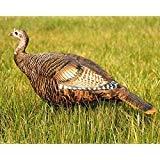 Dave Smith Decoys Leading Hen Turkey Decoy