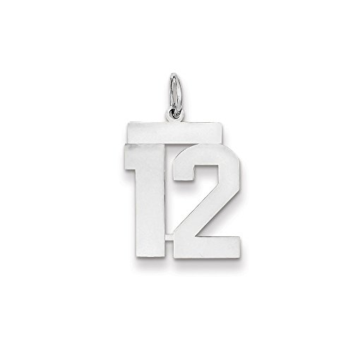 14K White Gold Medium Polished Number 12 Charm (24mm x 14mm)