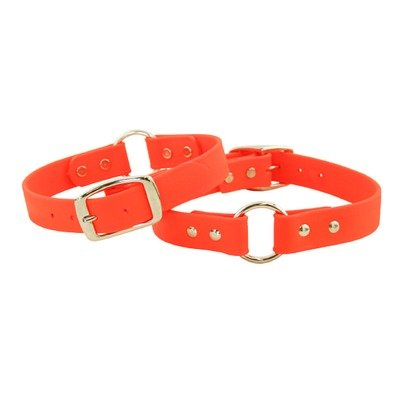 "Sparky's Center Ring Dog Collar Size: 1"" x 18"""