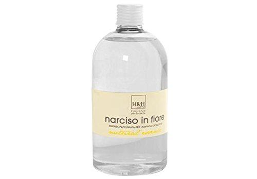 H& H Fragrance Olio per Lampada Catalitica al Narciso, 7x7x17 cm 55899