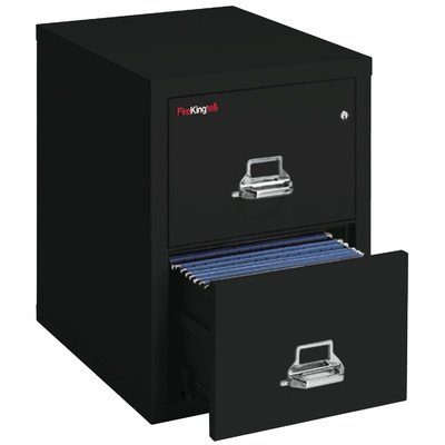 Fireproof 2-Drawer Vertical Letter File Finish: Champagne