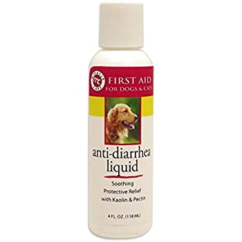 Amazon.com: Dr. goodpet diar-relief – Natural fórmula ...