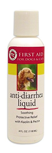 Kp Anti Diarrhea Liquid - 1