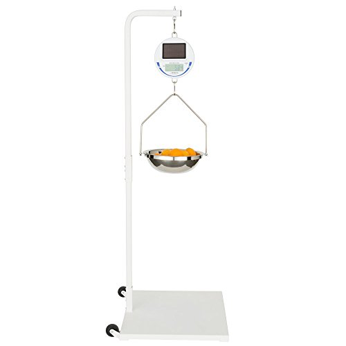 Cardinal Detecto 30 lb. Solar Power Hanging Scale and Stand Kit, Legal for Trade by Cardinal